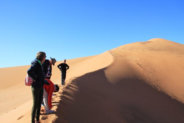 Combo Zuid-Afrika en Namibie